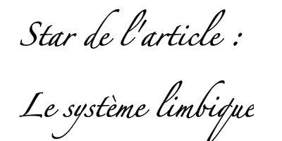 Ecriture sur fond blanc