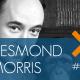 96-DESMOND-MORRIS